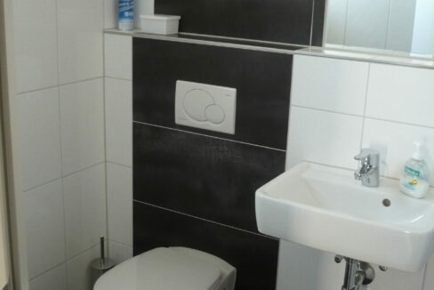 Raphael-WC